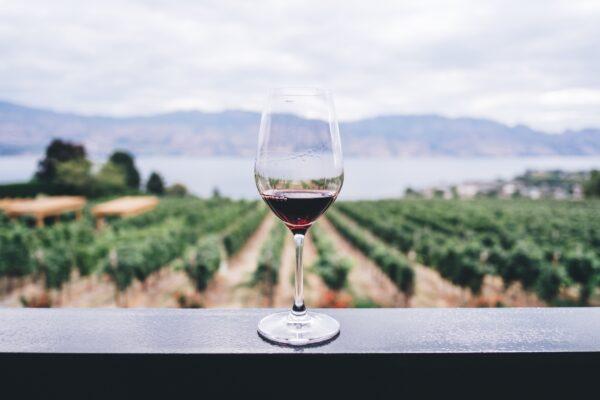 Journalist seeks people who have been buying organic wine